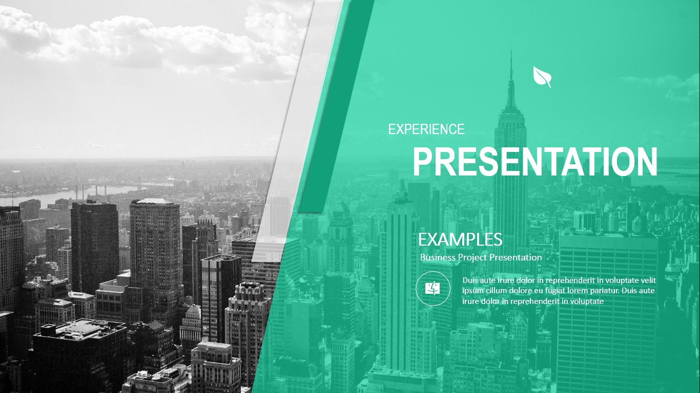 EXPERIENCE - Google Slides Template
