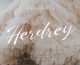 01 - Herdrey Free Script Font