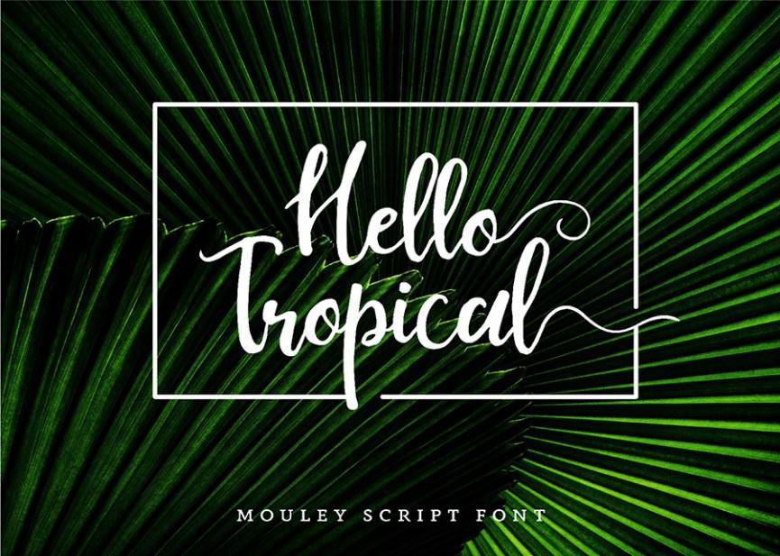03 - Mouley Script Free Font