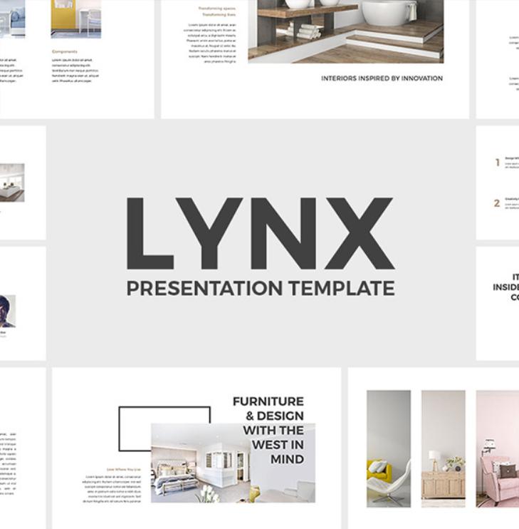 27 - Lynx Keynote Template