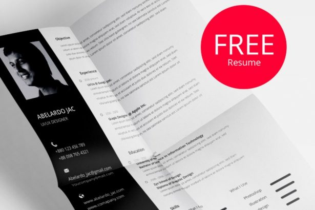 1 - Classy PSD Resume Template