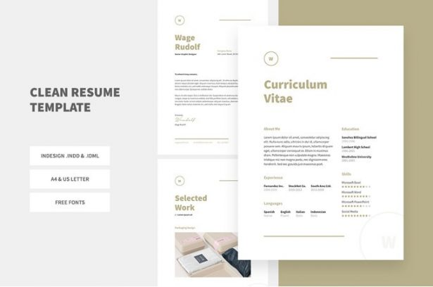 1 - Clean Resume Template