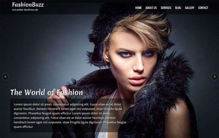 12 - Fashionbuzz Responsive WordPress Theme