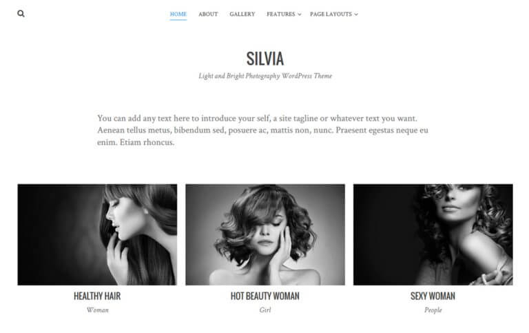 14 - Silvia Responsive WordPress Theme