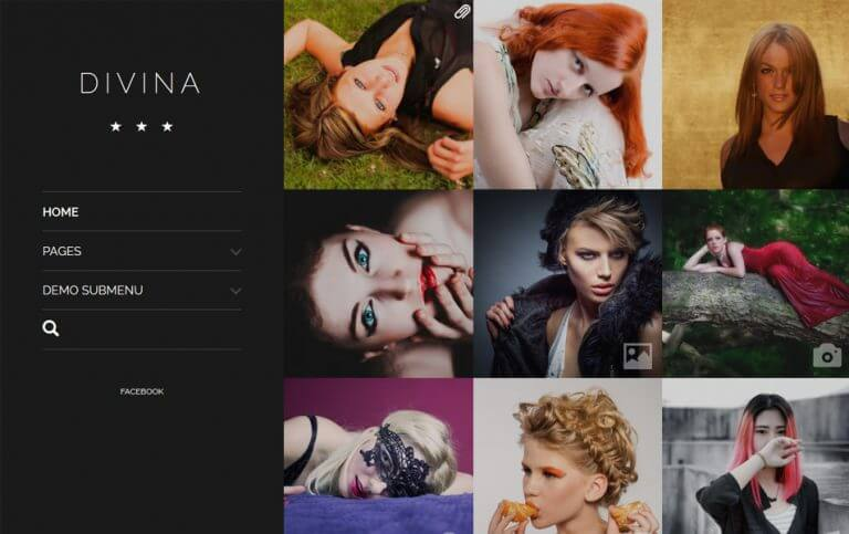 15 - Divina Responsive WordPress Theme