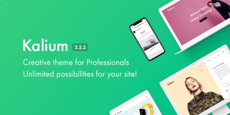 19 - Kalium Creative Theme for Professionals