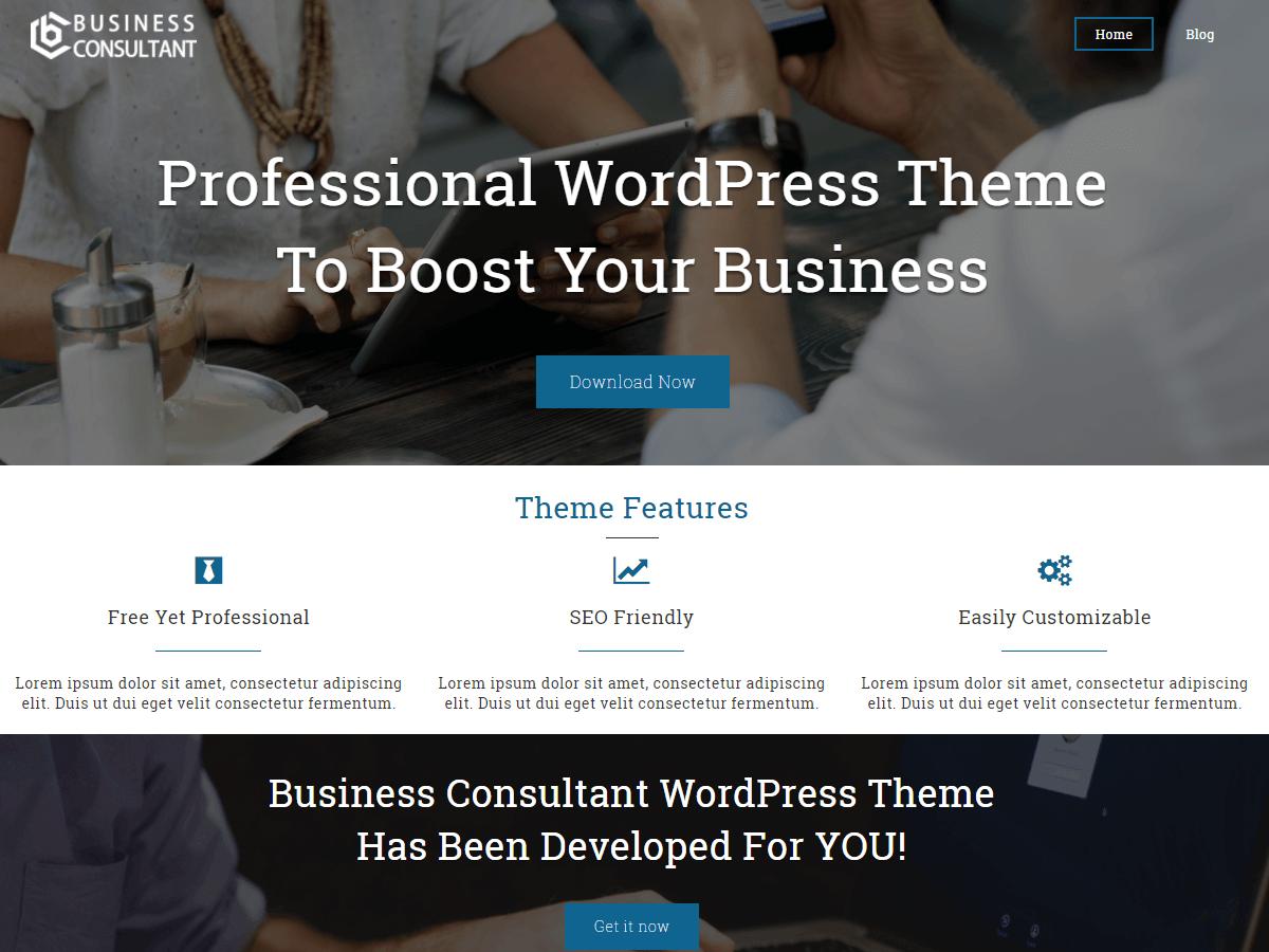 24 - Business Consultant