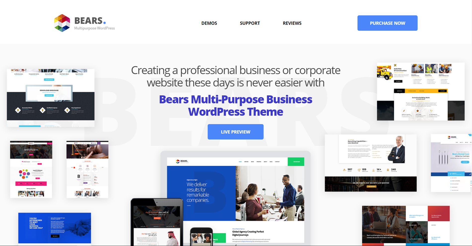 36. Bears - Multipurpose Business WordPress Theme
