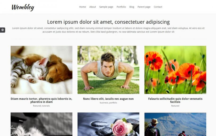 45 - Wembley Free Photography WordPress Theme