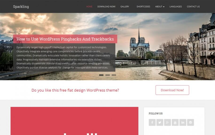 46 - Sparkling Free Photography WordPress Theme