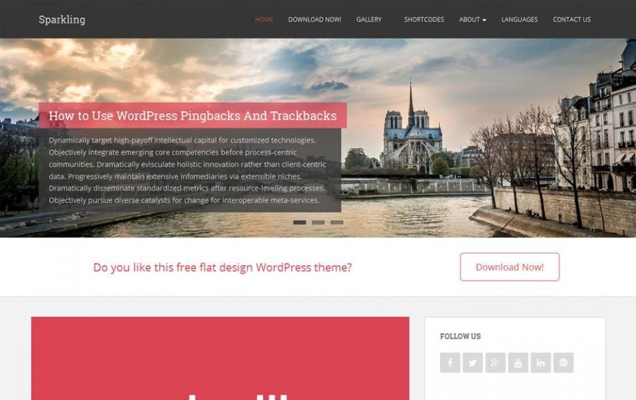 46 - Sparkling Free Photography WordPress Theme