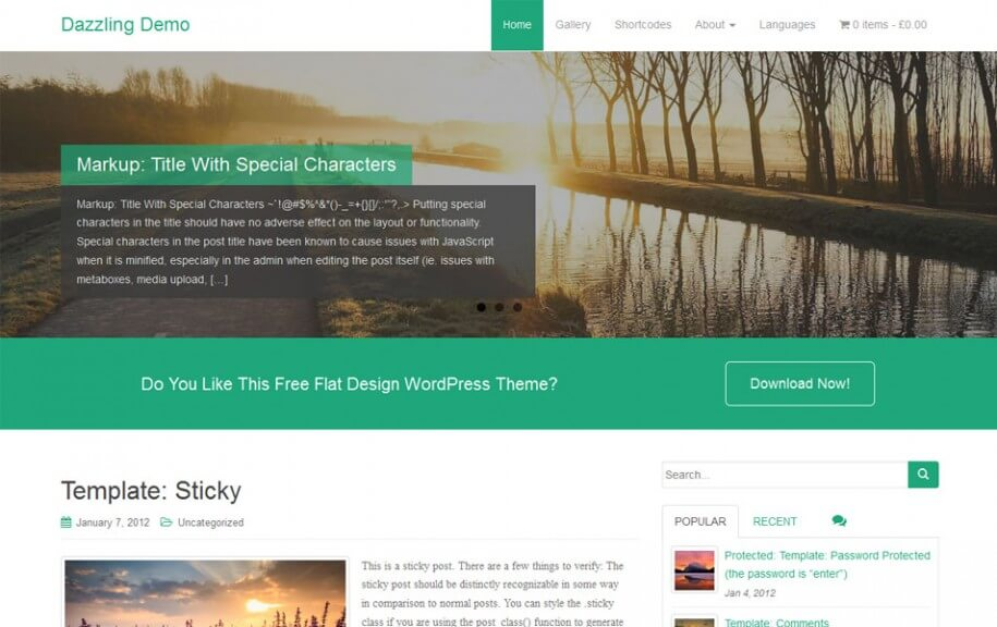 49 - Dazzling Free Photography WordPress Theme