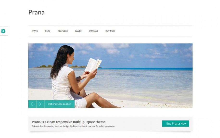 51 - Prana Free Portfolio WordPress Theme