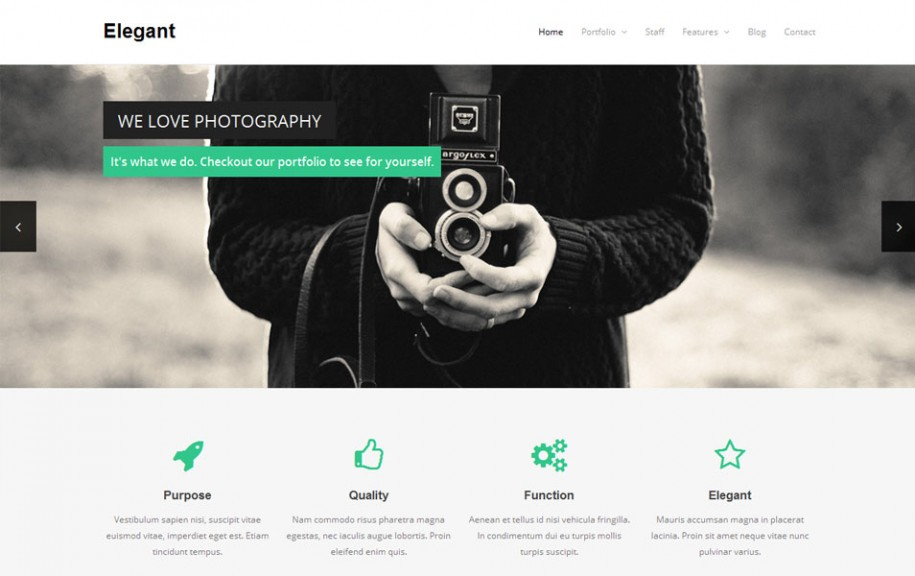 54 - Elegant Free Portfolio WordPress Theme