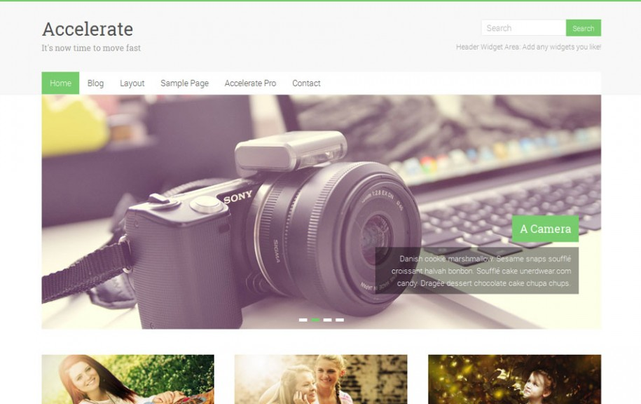 69 - Accelerate Free Portfolio WordPress Theme