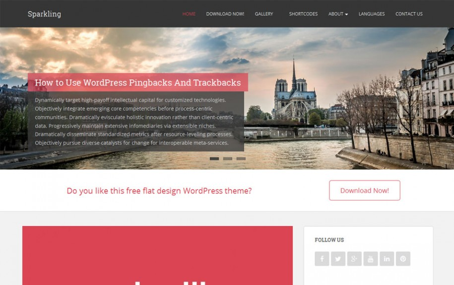 9 - Sparkling Free Portfolio WordPress Theme