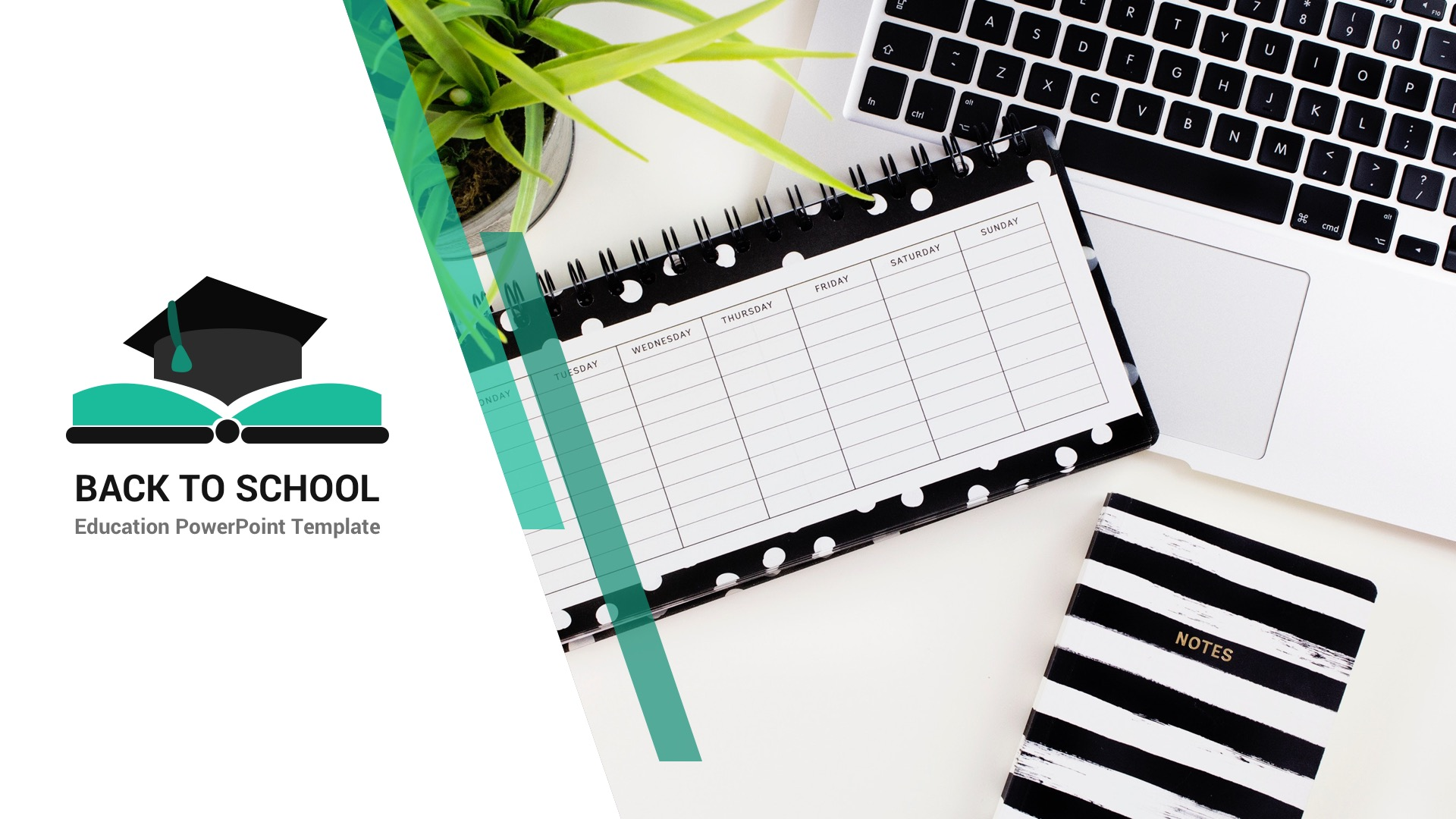 Back to School - Education & Learning PowerPoint Presentation Template 2