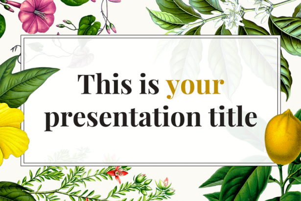 Constance Presentation Template