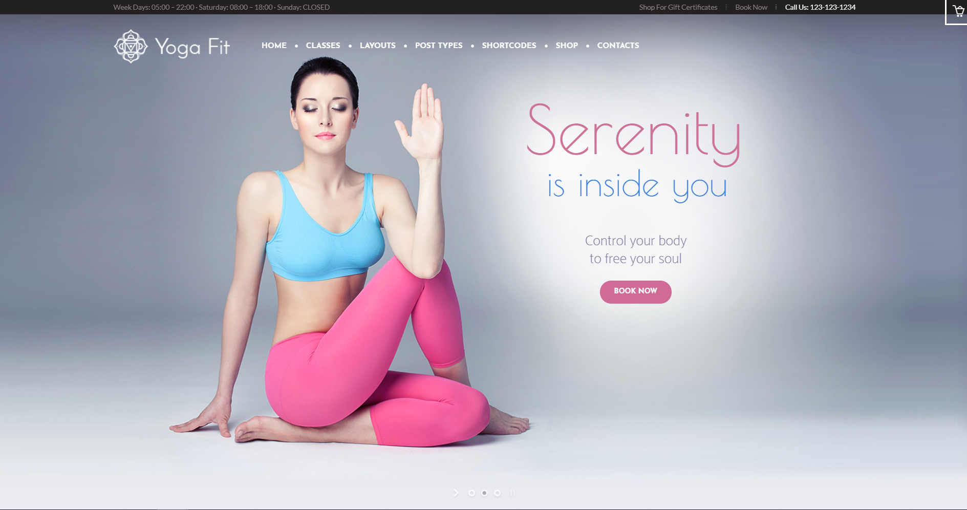 15. Yoga Fit - Sports, Fitness & Gym WordPress Theme
