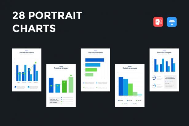 Professional Portrait Bar Charts